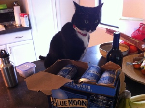 Zebbie looks guilty while hanging out near the booze.