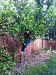 Keeping in theme with the class, Kyle enjoys his dinner while in a tree.